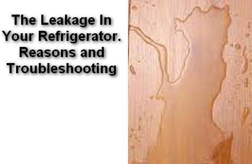 The Leakage In Your Refrigerator Reasons and Troubleshooting